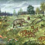 Палеогеновый период