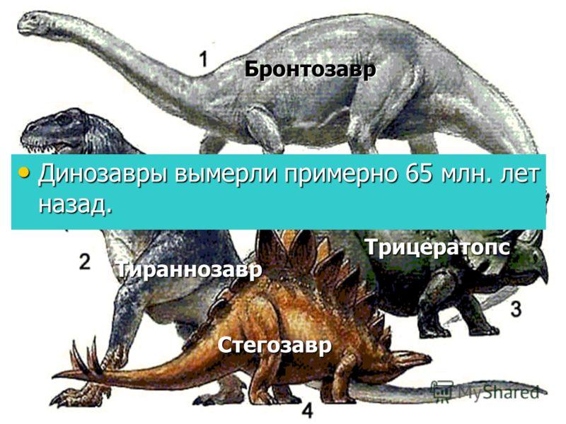 Сколько лет назад жили динозавры