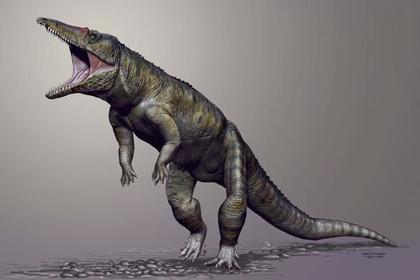 Откуда появились динозавры, предки динозавров