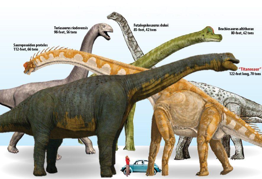 Почему динозавры были такими большими