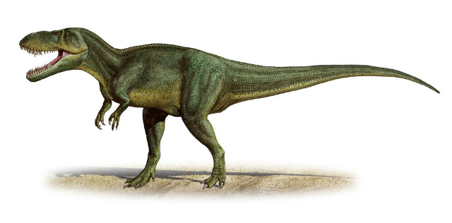 Торвозавр