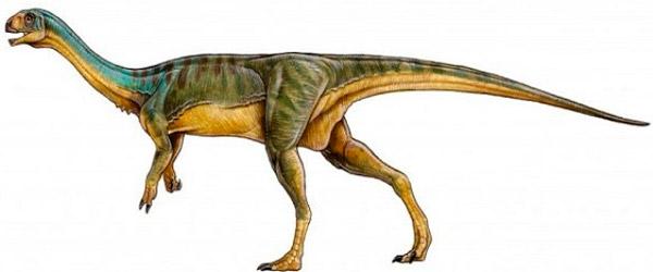 Чилизавр