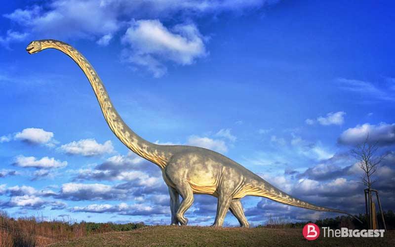 Маменчизавр