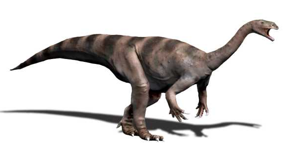 Платеозавр, фото платеозавр
