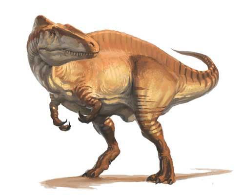 Акрокантозавр, фото акрокантозавр