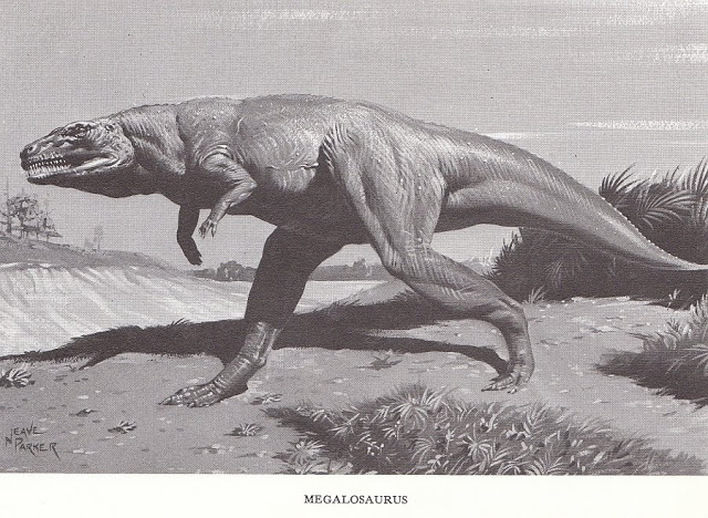 Мегалозавр, фото мегалозавр