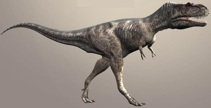 Альбертозавр, фото альбертозавр