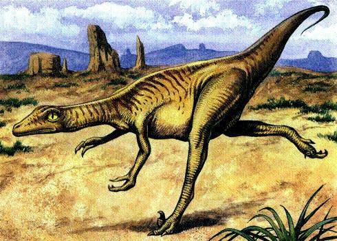 Троодон, динозавр троодон