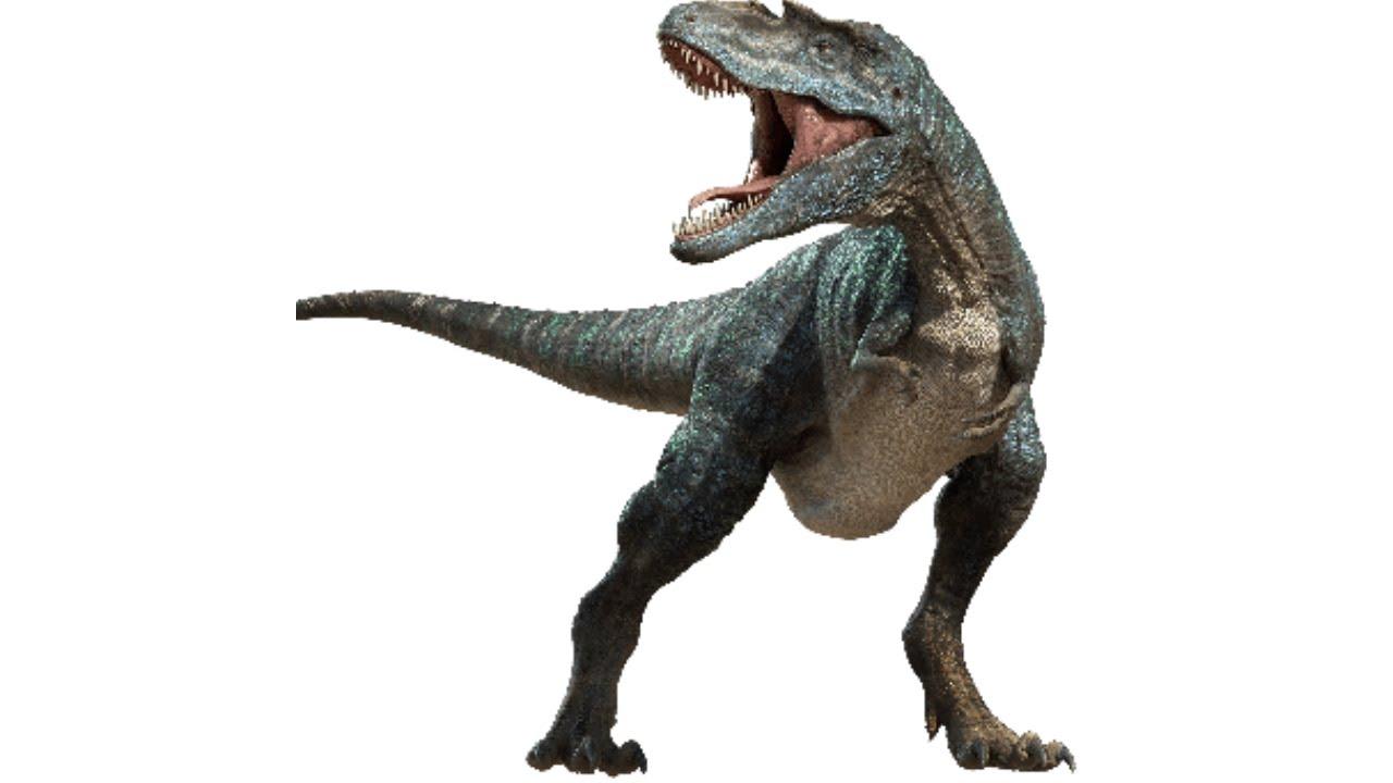 Горгозавр, горгозавр видео, горгозавр фото