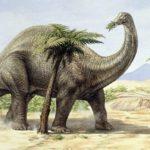 Все травоядные динозавры, все динозавры травоядные