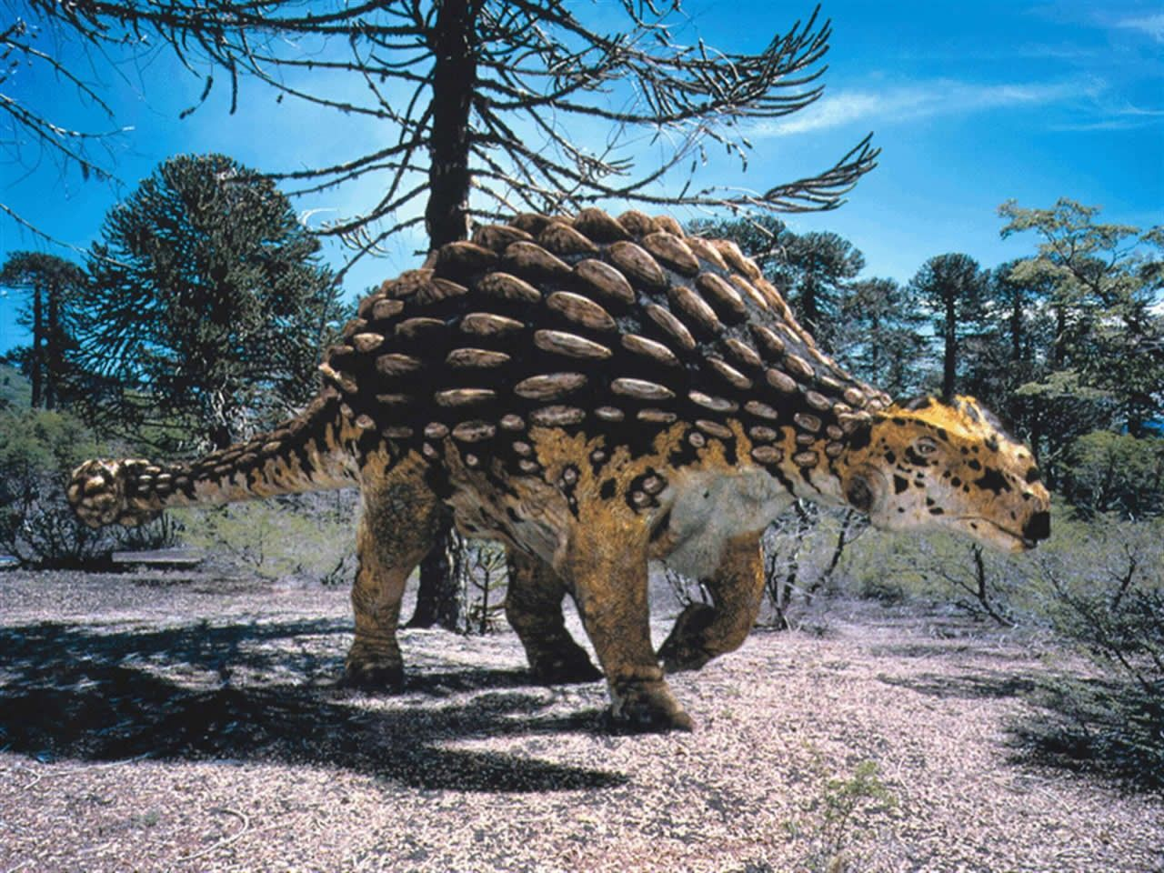 Анкилозавр, анкилозавр фото