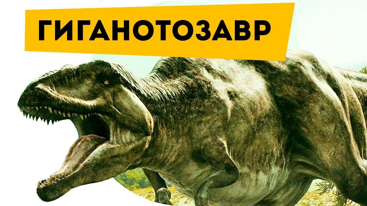 Гиганотозавр, гигантозавр фото