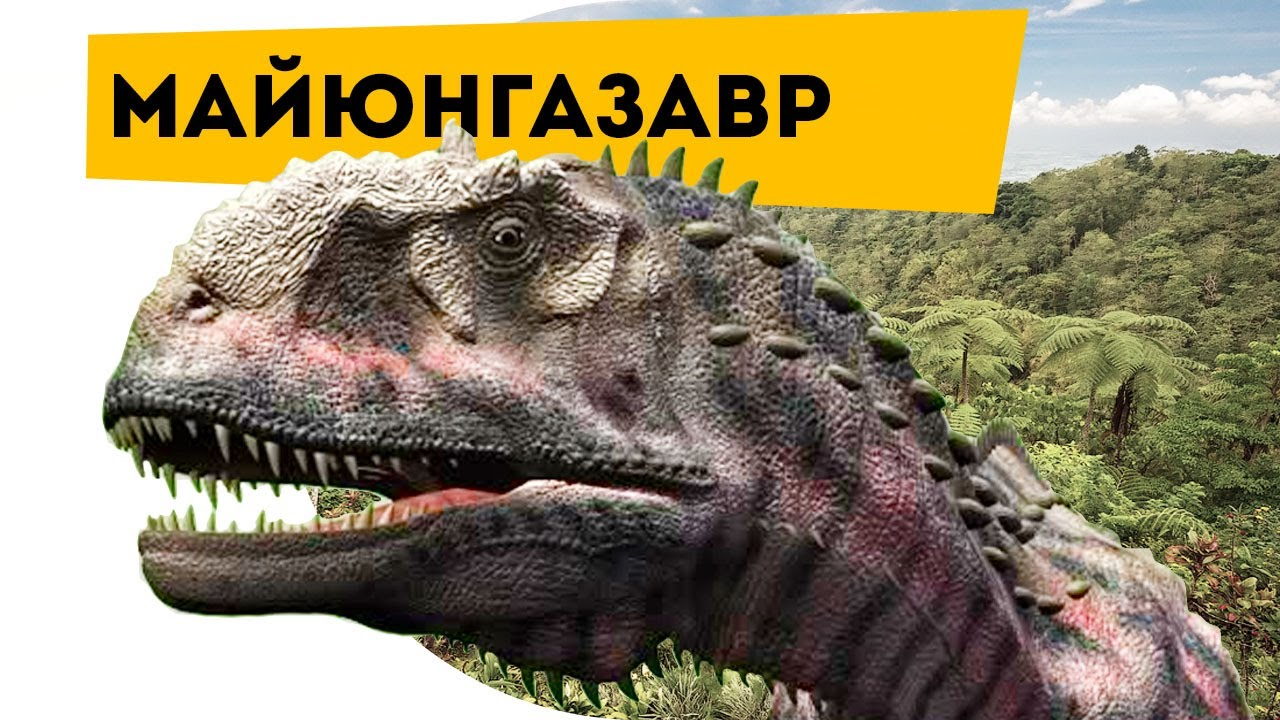 Майюнгазавр, маюнгазавр фото