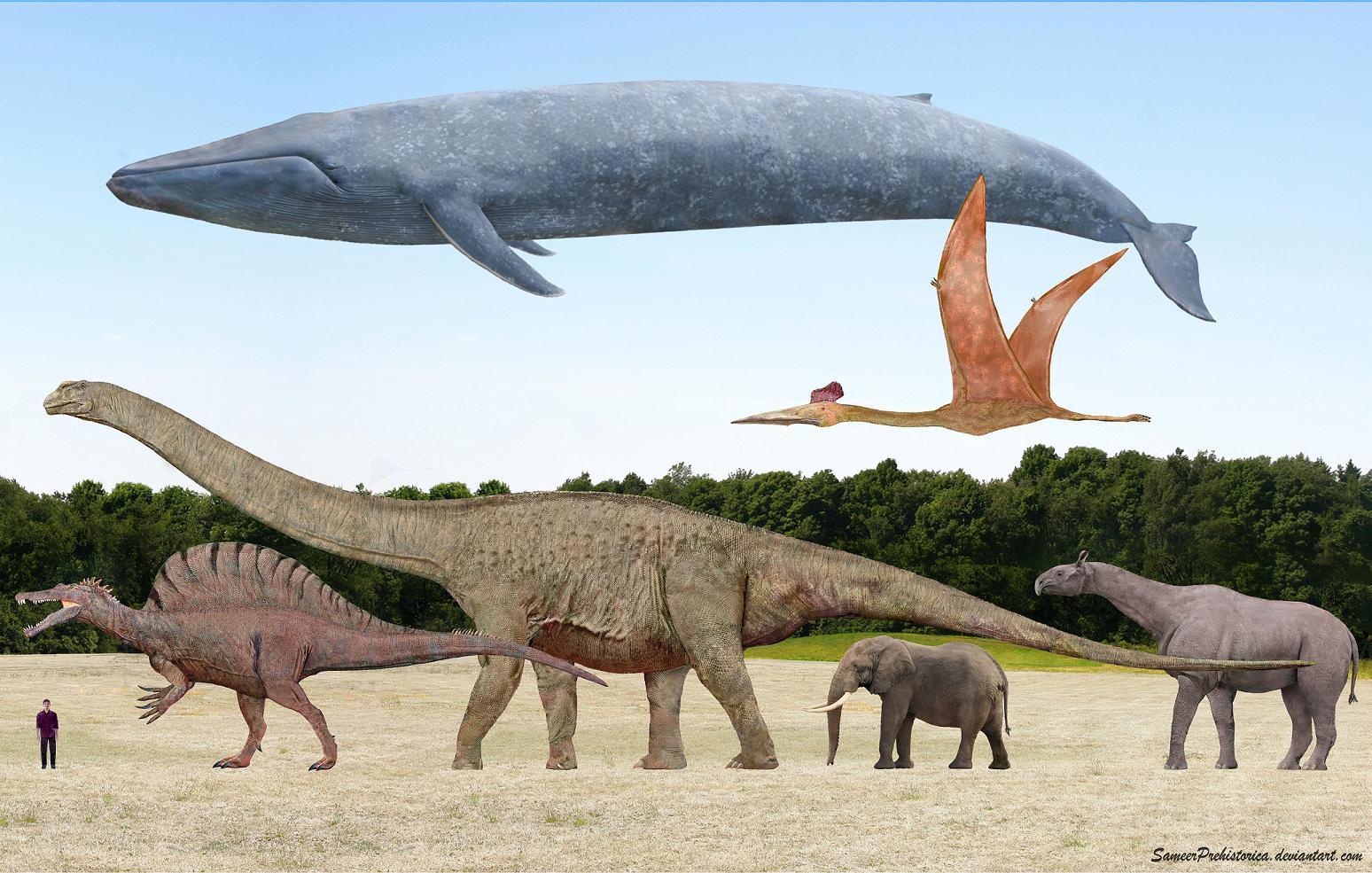 Почему динозавры были такие большие