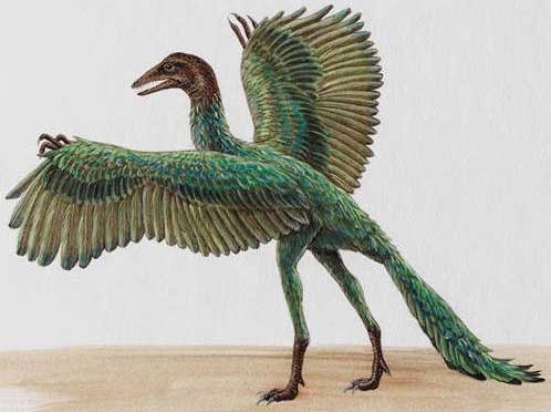 Археоптерикс древняя птица