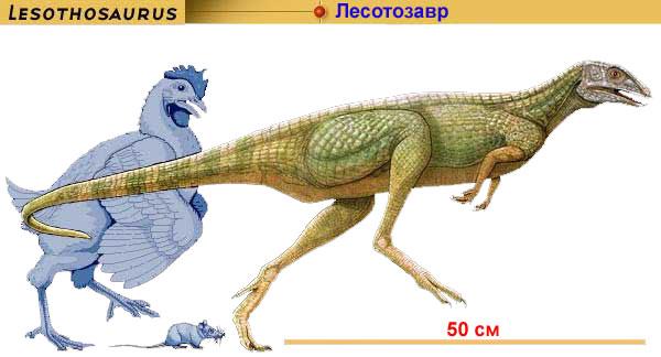 Самый маленький динозавр, Лесотозавр
