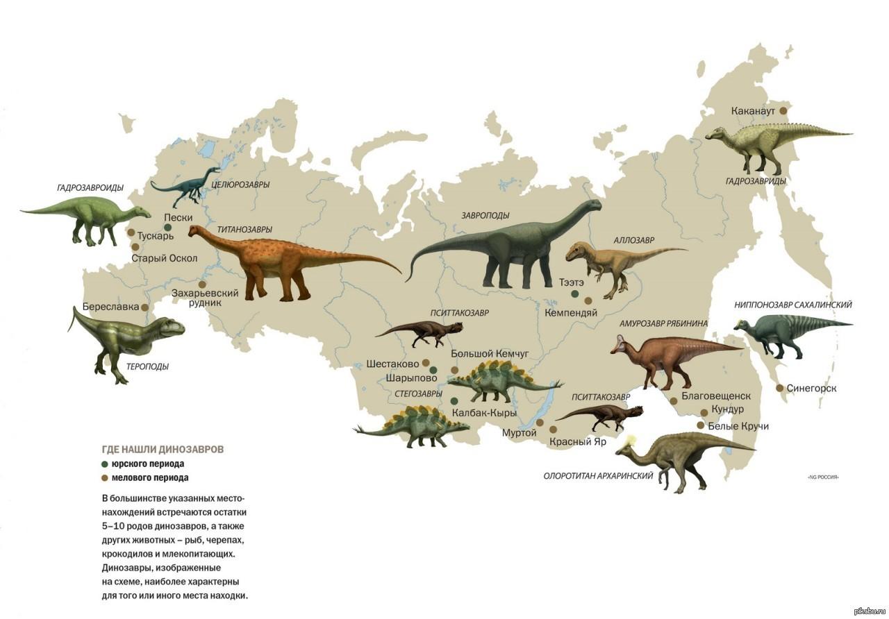 Где жили динозавры, динозавры где жили