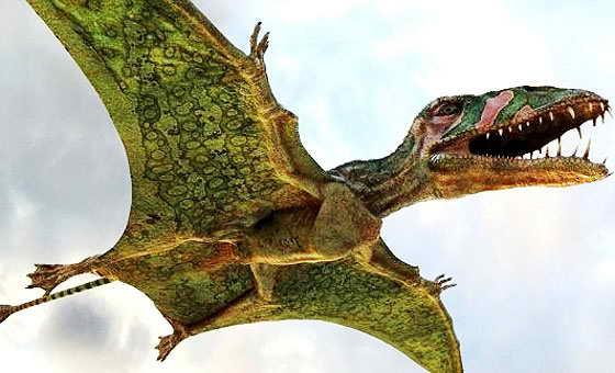 Летающий ящер 9 букв сканворд