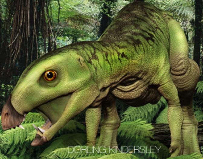 Картинки по запросу Гетеродонтозавр