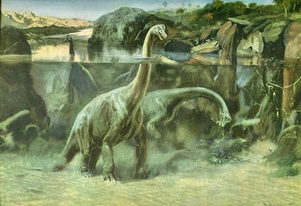 Динозавры с длинной шеей