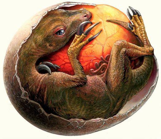 Сколько жили динозавры, сколько лет жили динозавры