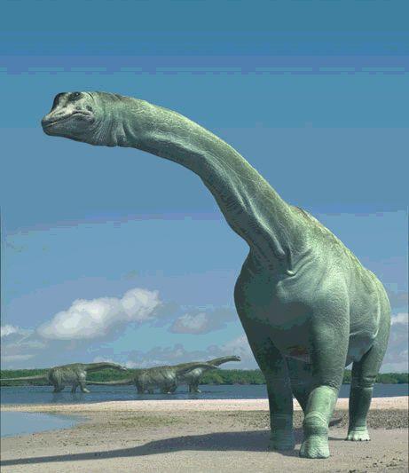 Самый тяжелый динозавр