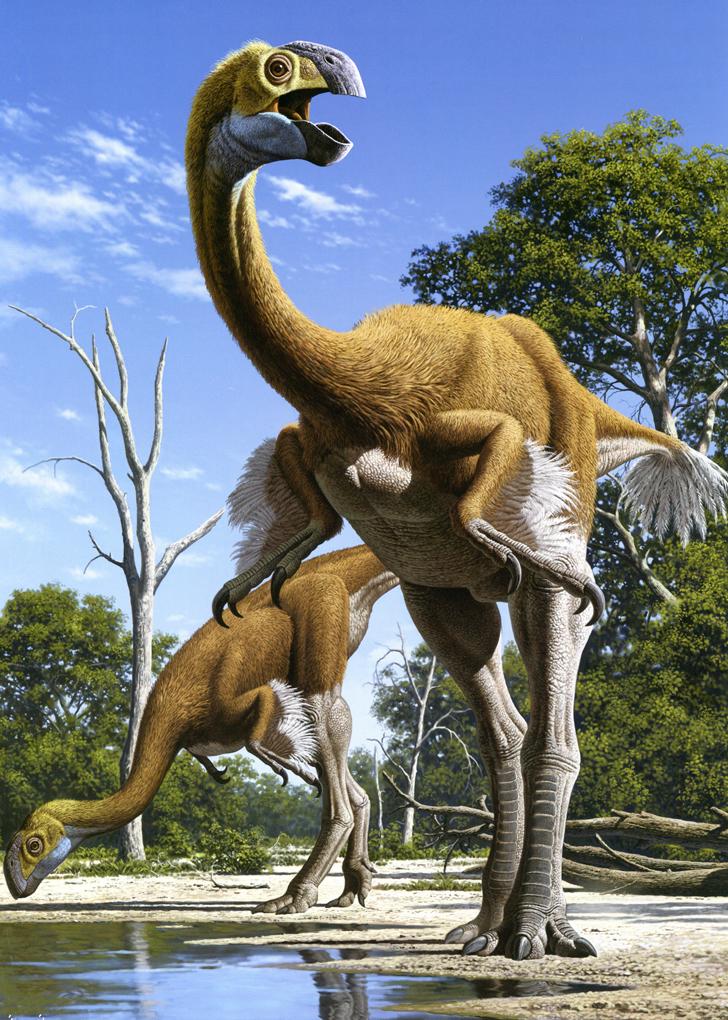 Самый большой динозавр летающий, Гигантораптор