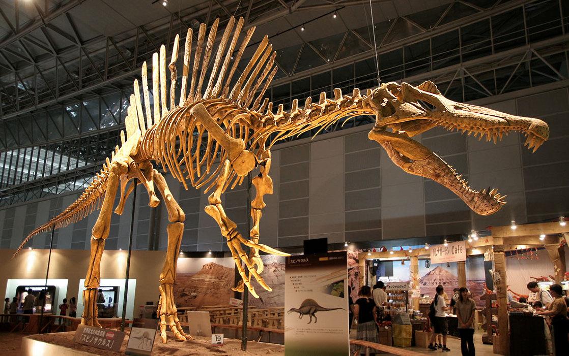 Самый большой в мире хищный динозавр