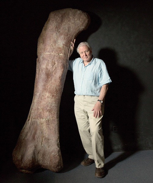 Самый большой в истории динозавр, самый огромный динозавр