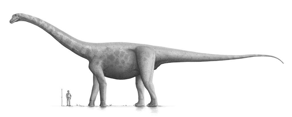 Брухаткайозавр