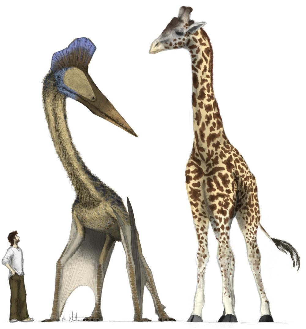 Кетцалькоатль птерозавр