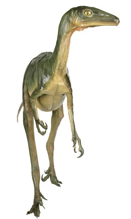 Самый умный динозавр