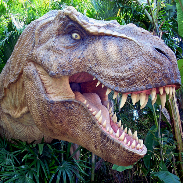 Все виды тиранозавров