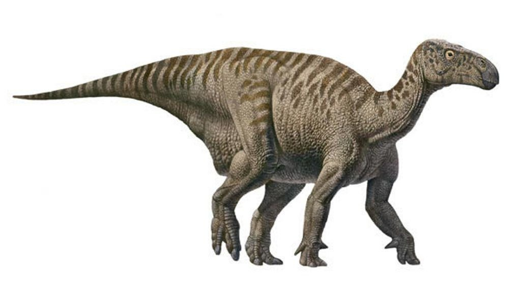Динозавр 10 букв