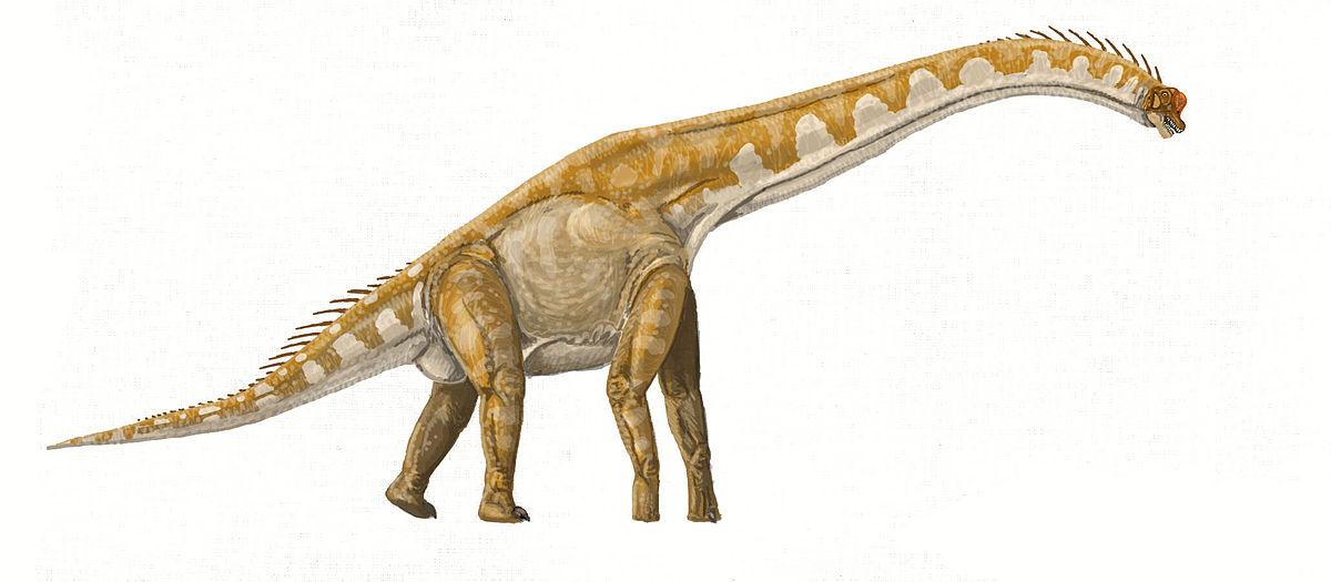Динозавр на букву ж, Жираффатитан