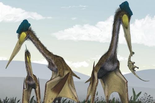 Летающие динозавры, картинки летающие динозавры