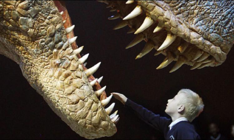 У какого динозавра были самые большие зубы