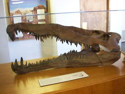 Фитозавр