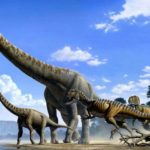 Динозавр с длинной шеей название