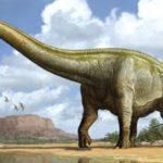 Диплодок, диплодок динозавр, диплодок фото