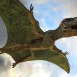 Летающий ящер