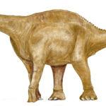 Гигантский динозавр 8 букв сканворд