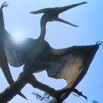 Летающие динозавры названия, летающие динозавры названия и фото