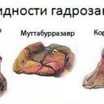 Динозавр с хохолком