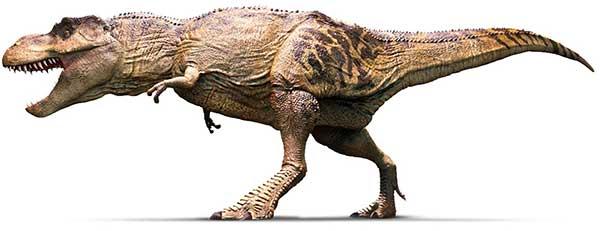 фото тираннозавр рекс