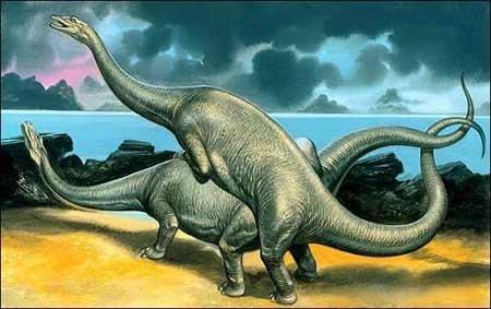Секс динозавров, член динозавра