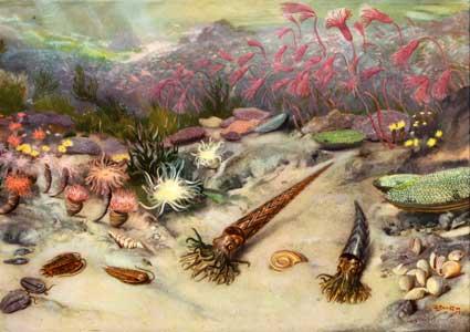 Силурийский период, силурийский период животный мир
