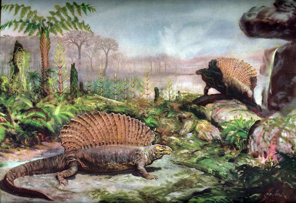 Каменноугольный период, животные каменноугольного периода
