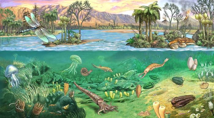 Палеозойская эра, периоды палеозойской эры, животные палеозойской эры
