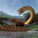 Змея титанобоа, титанобоа фото